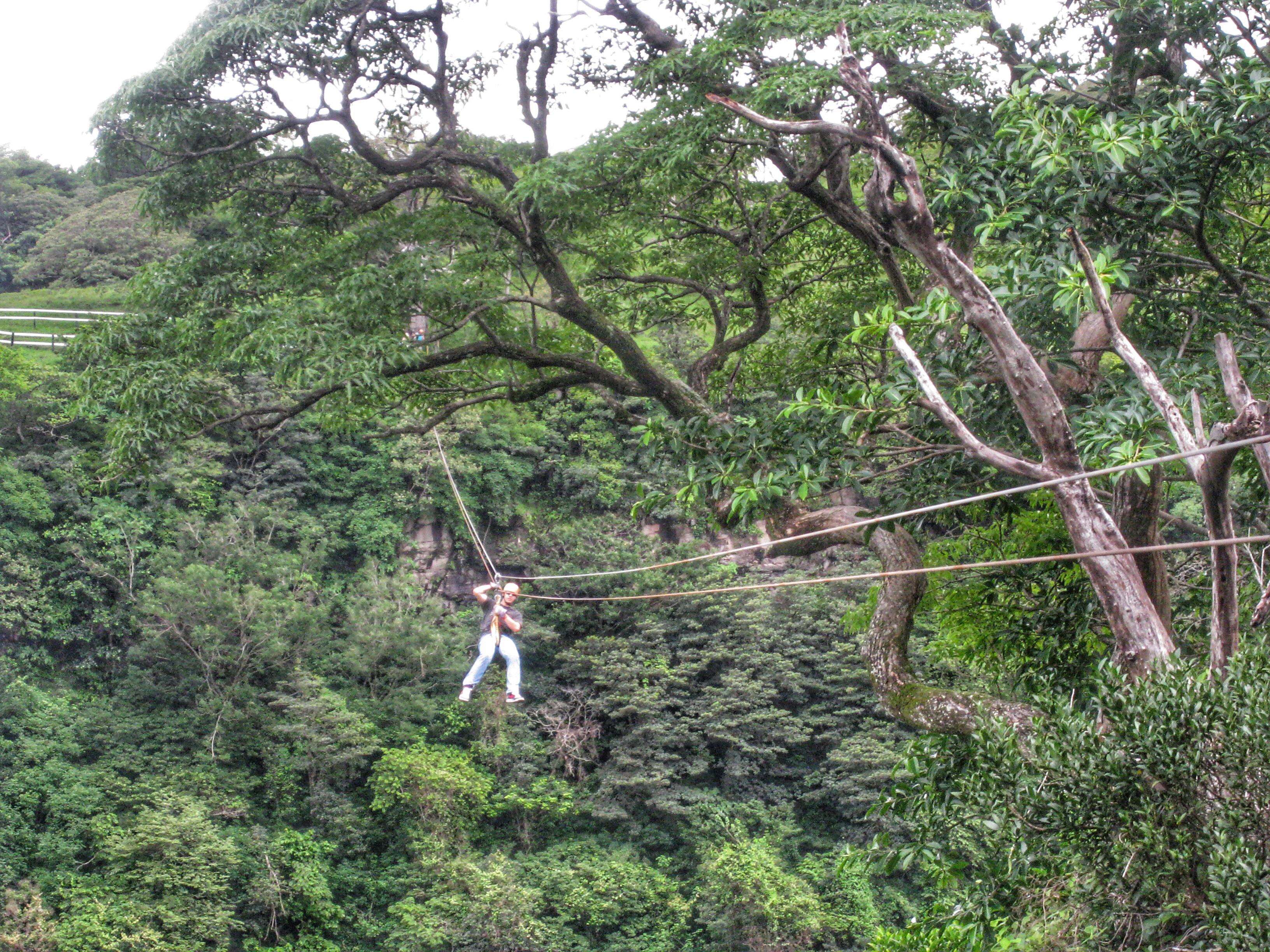 Zip Lining Across Monteverde Cloud Forest: Costa Rica